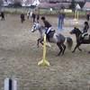 xx-horse-me-xx